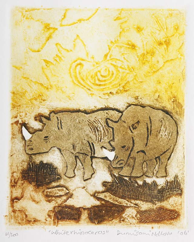 2006 white rhinoceros 16x13